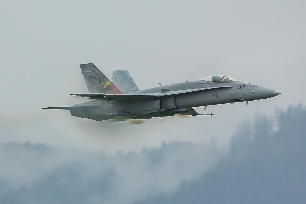 Swiss Air Force, Mc Donell Douglas F/A-18 'Hornet'